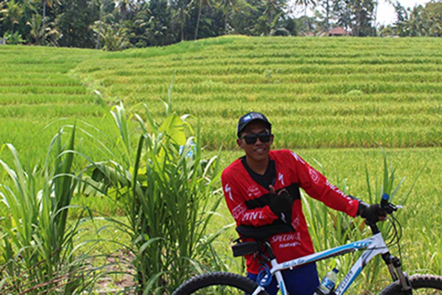 rice field luwus village, bike tour, bali moon bike