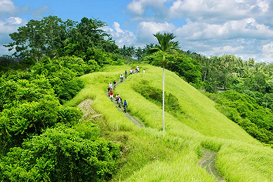 ubud cycling track, ubud village