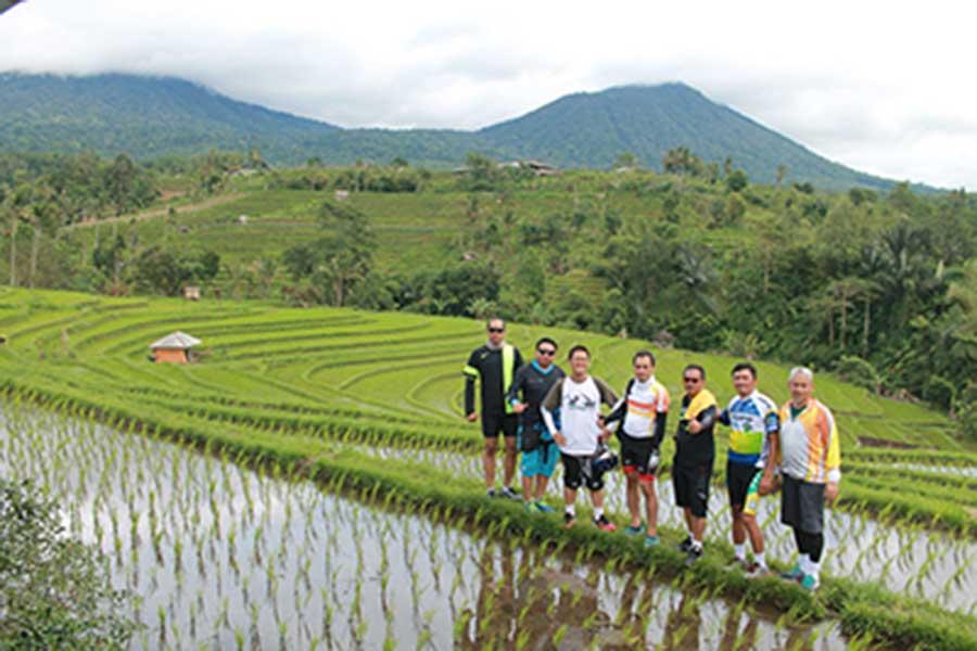 rice paddy, jatiluwih rice terraces, bali moon bike